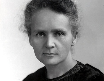 Marie curie contribution